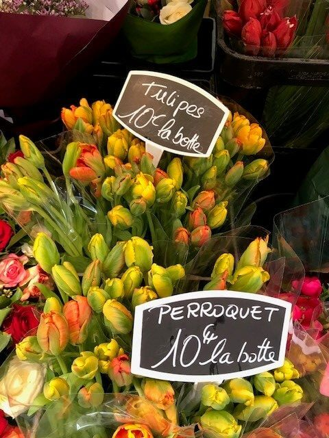 Tulpen in Paris, tulipes à Paris (Small)